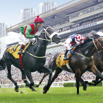 IRRIDESCENCE - (Caesour - Meretricious by Dancing Champ) - Queen Elizabeth II Cup G1