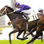 REGAL RANSOM (Caesour - Palace Gossip by Dominion Royale) (bred by Avontuur Stud) - Champions Challenge G1