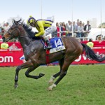 WAR HORSE (Victory Moon - Star Deputy by Deputy Govenor) - Golden Horseshoe Gr 1 2012