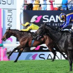 YORKER (Jet Master - Little Indian by Al Mufti) - Sansui Summer Cup Gr 1 2013